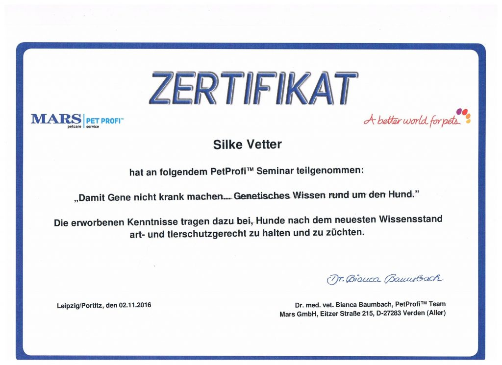 zertifikat12-16